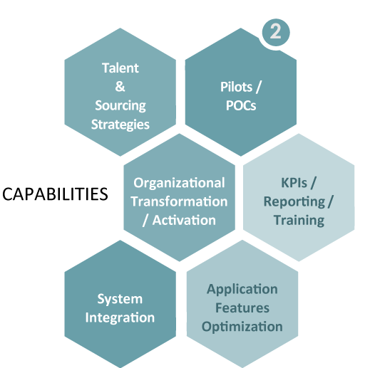 2. Capabilities, Talent and Sourcing Strategies, Pilots or POCs, Ogranizational Transformation or Activation, KPIs or Reporting or Training, System Integration, Application features optimization.