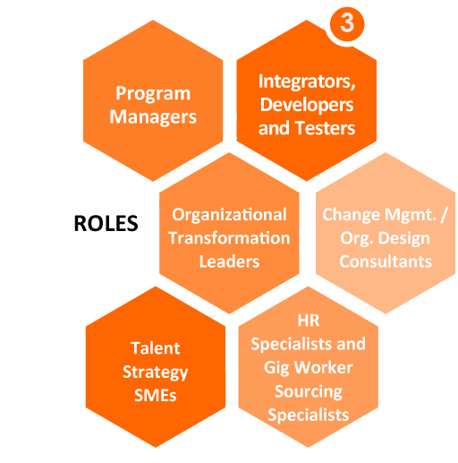3. Roles, Program Manager, Inegrators, developers, and testers, organizational transformation leaders, change management or organizational design consultants, talent strategy SMEs, HR specialists and gig worker sourcing specialists.