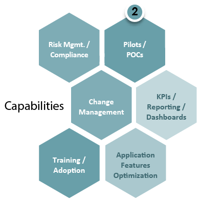 Capabilities Risk Management or Compliance, Pilots or POCS, Change Management, KPIs/ Reporting/ Dashboards, Training/Adoption, Application Features Optimization