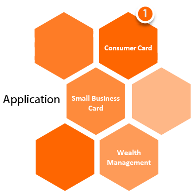 Application Small Business, Consumer Card, Wealth Management
